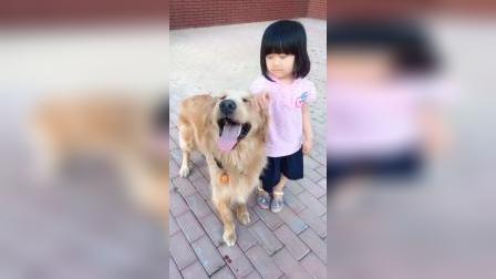 狗狗:还好旁边是个小美女,让她摸摸
