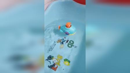 海马,企鹅和乌鱼都来洗澡了