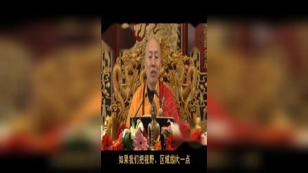 龙舒净土文    11讲(上)(共12讲)   大安法师2010年9月主讲于吉林省吉林市.VOB