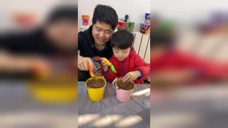 童年乐趣:种下薯片,怎么长出来棒棒糖啦