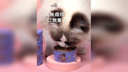 卷尾巴猫罐头(金枪鱼)