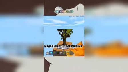 迷你世界:迷你最高高度,不能种树