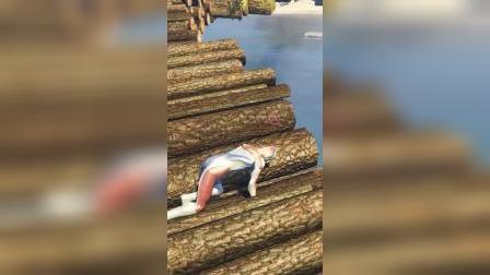 小游戏:奥特曼过独木桥