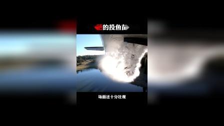 飞机从几十米高空投放鱼苗,存活率高达95%