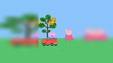 谁才是猪妈妈的宝贝呢?