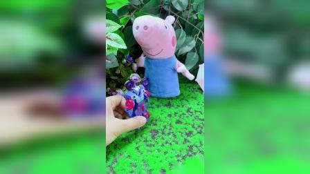 小猪佩琪和她的朋友们