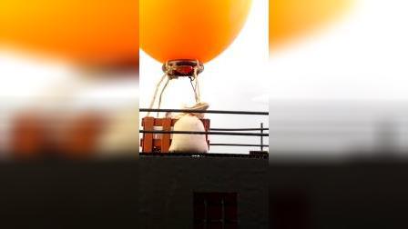 仓鼠历险记:我乘上热气球逃脱升天了!