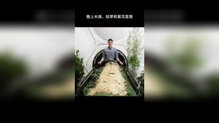 化作春泥更护花,这种土葬,反而能反哺地球