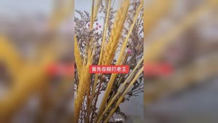 【西藏冒险王】王爸的要求被驳回怎么办?