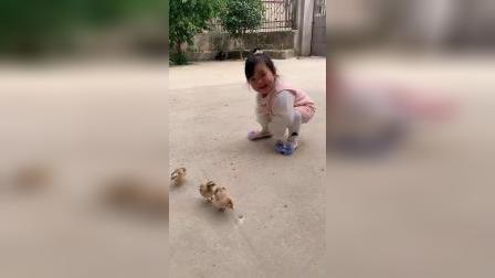 童年趣事:来姨姨家一天没吃没喝,只顾抓鸡了