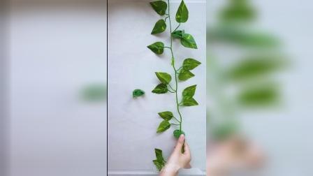 好物分享:绿箩固定器,墙面美观整洁了