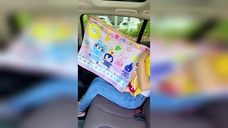 热天给车窗装上这个遮阳帘,再也不怕晒了