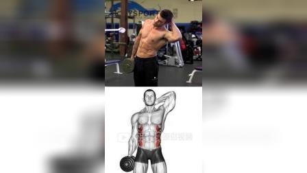 目标肌肉:腹外斜肌/啤酒肚/肚子#健身打