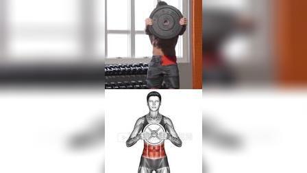 目标肌肉群:腹肌/啤酒肚/肚腩#腹肌