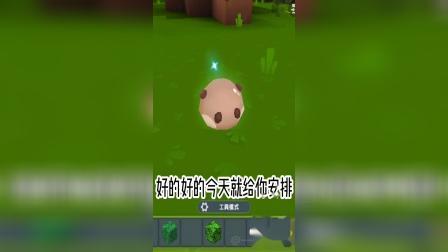 迷你世界:召唤绿色宠物