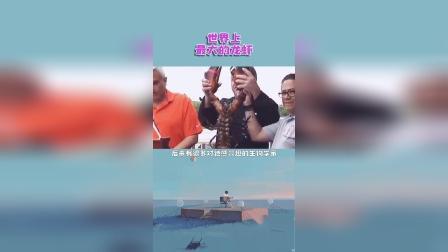 世界上最大的龙虾