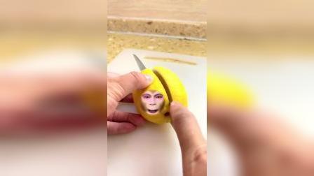 今天猴哥变成了柠檬。