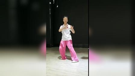 扬式26式太极拳贾老师教学