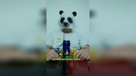 熊大熊二没吃过饺子,想去光头强家看看啥是饺子