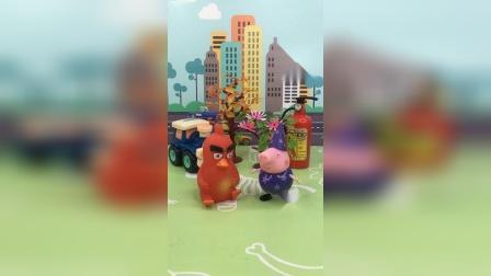 少儿玩具:猪爷爷的鸡下蛋了