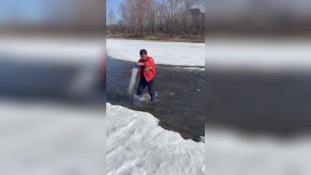 #冬捕 大河起鱼笼收获满满。
