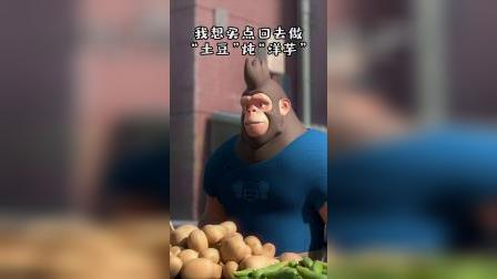 我只是想买点洋芋回去炖土豆