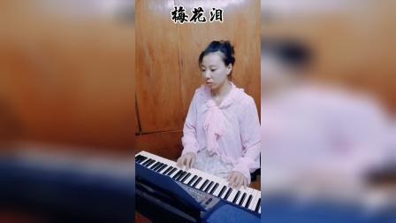 梅花泪 电子琴演奏 天使演奏