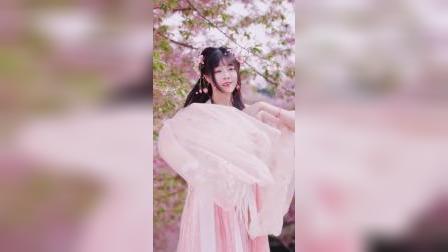 仙子飞入桃花林,留下粉红色的回忆!