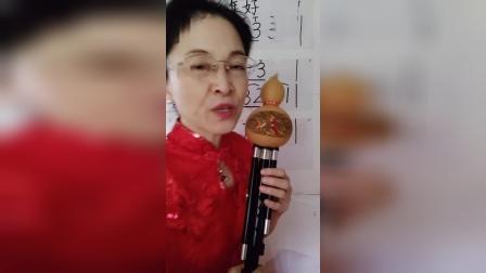 红梅葫芦丝教学零基础入门包学会视频新年好